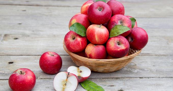 ecomusée pommes