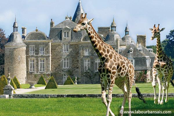 Week end à Rennes - visite du zoo de La Bourbansais